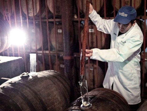 Le Master blender  à l'œuvre - Les fûts de vieillissement à la distillerie The Glenrothes
