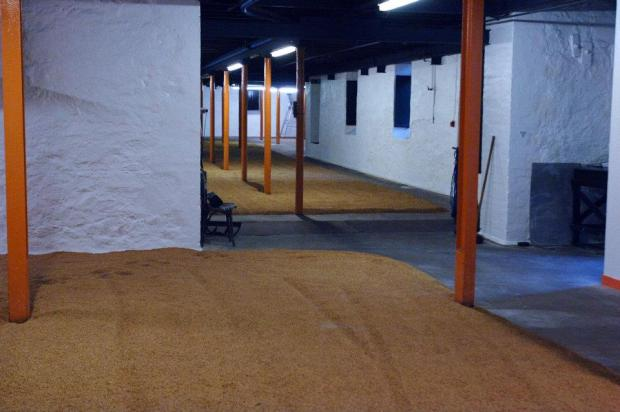 Zone de maltage - Distillerie Springbank